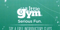 The Little Gym of Lake Oswego 2